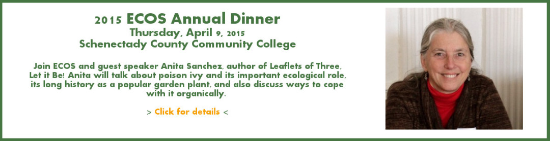 ECOS 2015 Annual Dinner with guest Anita Sanchez